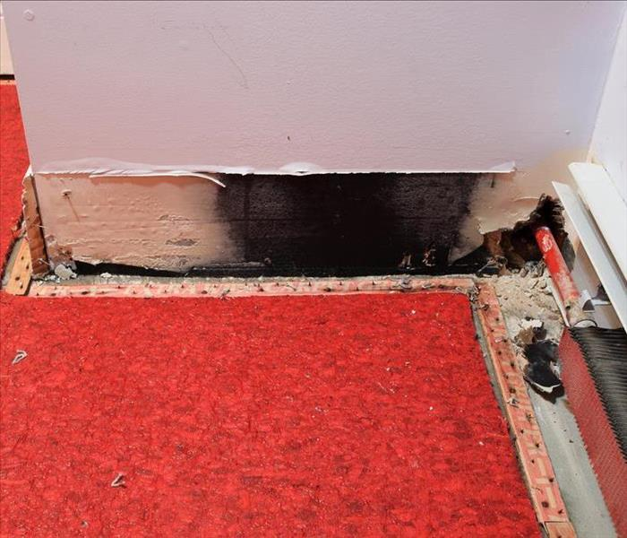 Black mold behind baseboard
