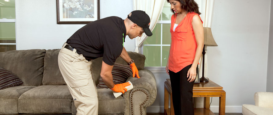 Overland Park, KS carpet upholstery cleaning