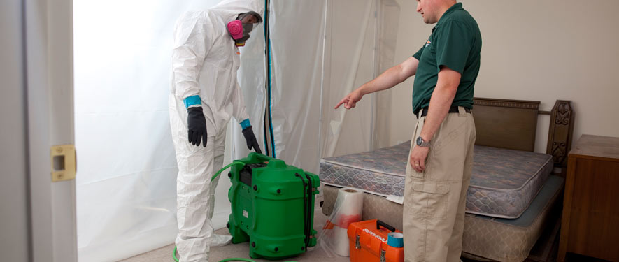 Overland Park, KS mold removal process